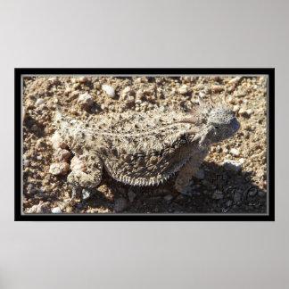 Great Horned Lizard Poster