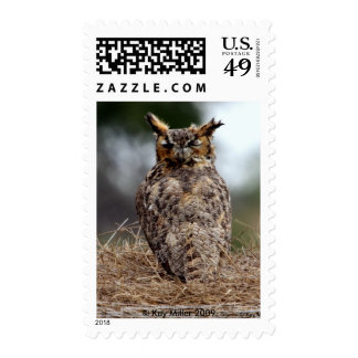 Great Horned Owl - 2 - 9 - 08 Stamp