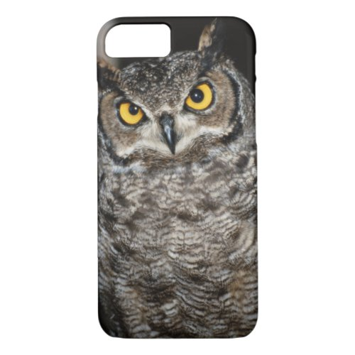 Great Horned Owl  2 Phone Case