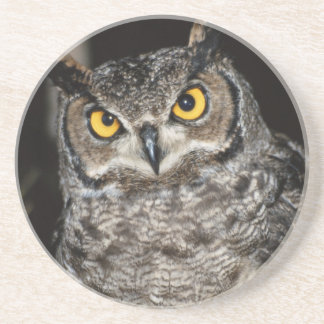 Great Horned Owl  2 Coaster