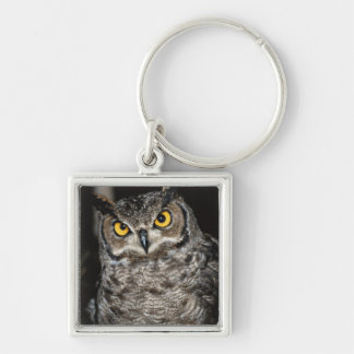 Great Horned Owl  2 Keychains
