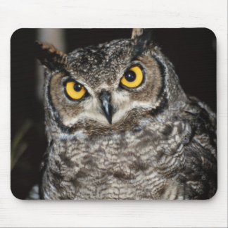 Great Horned Owl  2 Mouse Pad