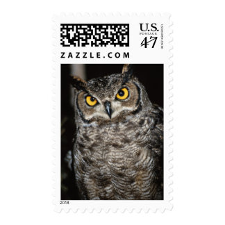 Great Horned Owl  2 Postage