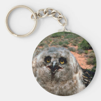 Great Horned Owl (3 weeks) Key Chain