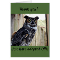 Great Horned Owl Adoption Card