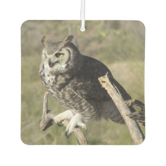 Great Horned Owl Air Freshener