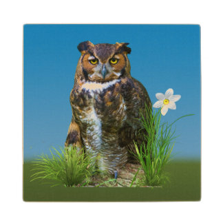 Great Horned Owl and Flower Wood Coaster