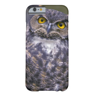 Great Horned Owl Barely There iPhone 6 Case