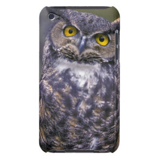 Great Horned Owl Barely There iPod Cover