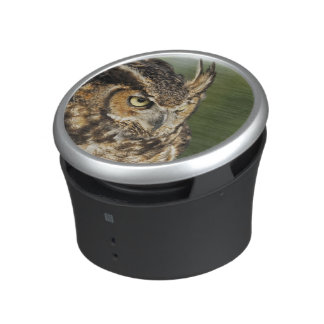 Great Horned Owl, Bubo virginianus, Captive Bluetooth Speaker