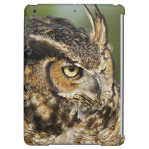 Great Horned Owl, Bubo virginianus, Captive iPad Air Cover