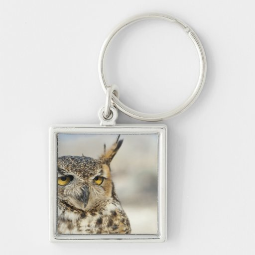 Great Horned Owl (Bubo virginianus), captive Silver-Colored Square Keychain