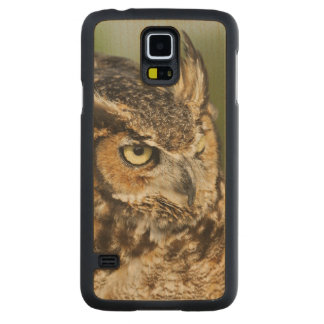 Great Horned Owl, Bubo virginianus, Captive Carved® Maple Galaxy S5 Case
