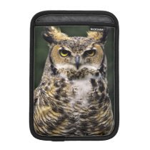 Great Horned Owl (Bubo virginianus), full body iPad Mini Sleeve