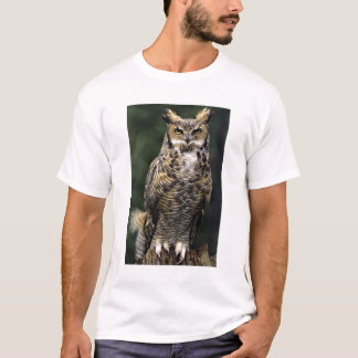 Great Horned Owl (Bubo virginianus), full body T-Shirt