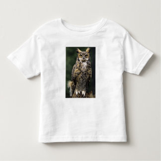 Great Horned Owl (Bubo virginianus), full body Toddler T-shirt