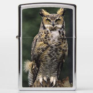 Great Horned Owl (Bubo virginianus), full body Zippo Lighter