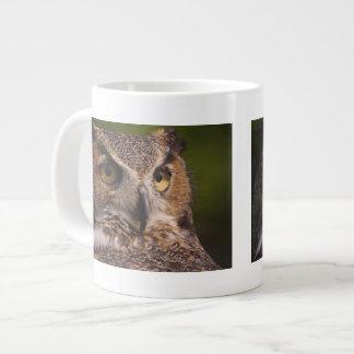 Great Horned Owl, Bubo virginianus Giant Coffee Mug