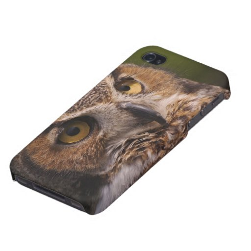 Great Horned Owl, Bubo virginianus iPhone 4 Cases