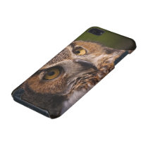 Great Horned Owl, Bubo virginianus iPod Touch (5th Generation) Case