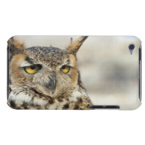 Great Horned Owl (Bubo virginianus) iPod Touch Cover