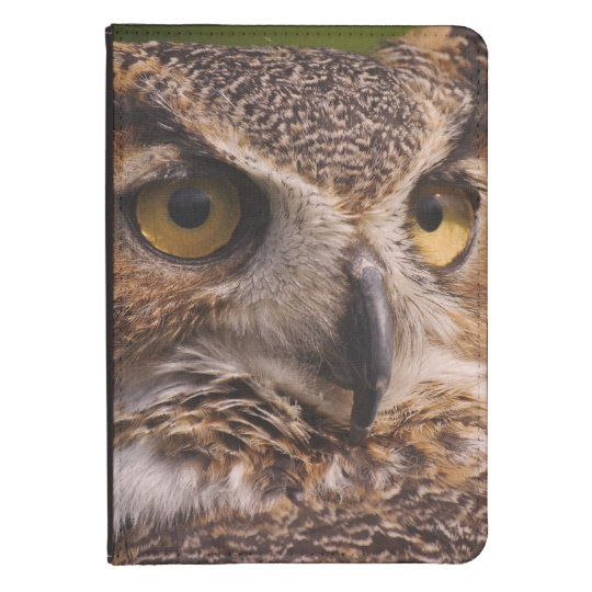 Great Horned Owl, Bubo virginianus Kindle Case