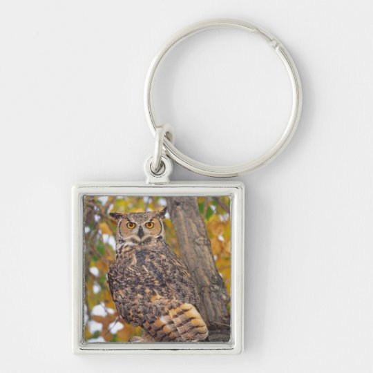 Great Horned Owl, Bubo virginianus, Native to Keychain