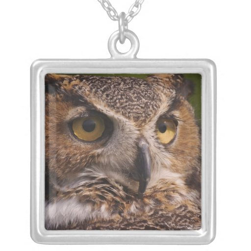 Great Horned Owl, Bubo virginianus Square Pendant Necklace