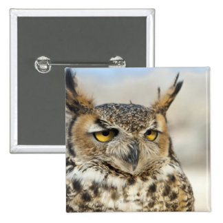 Great Horned Owl (Bubo virginianus) Pinback Button