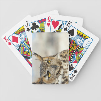 Great Horned Owl (Bubo virginianus) Bicycle Playing Cards