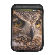 Great Horned Owl, Bubo virginianus Sleeve For iPad Mini