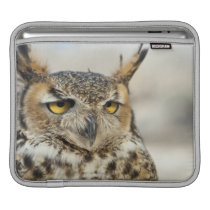 Great Horned Owl (Bubo virginianus) Sleeve For iPads