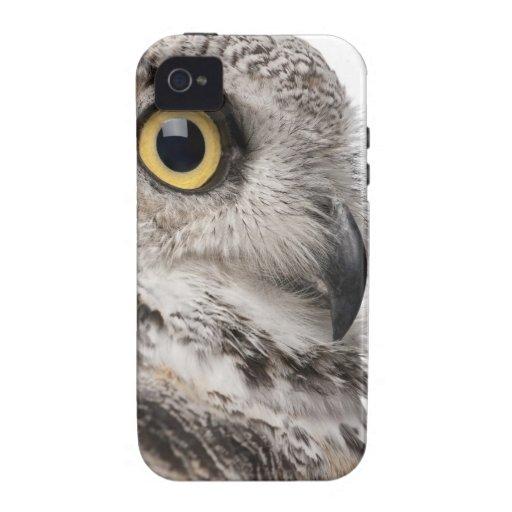 Great Horned Owl - Bubo Virginianus Subarcticus iPhone 4 Covers
