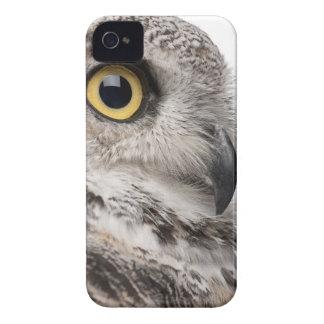 Great Horned Owl - Bubo Virginianus Subarcticus iPhone 4 Case-Mate Case