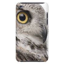 Great Horned Owl - Bubo Virginianus Subarcticus iPod Touch Cover