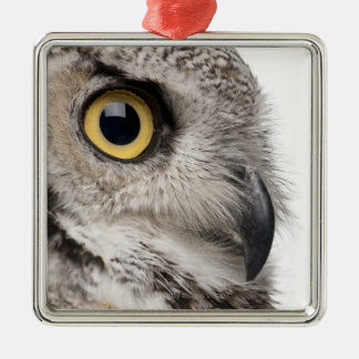 Great Horned Owl - Bubo Virginianus Subarcticus Metal Ornament