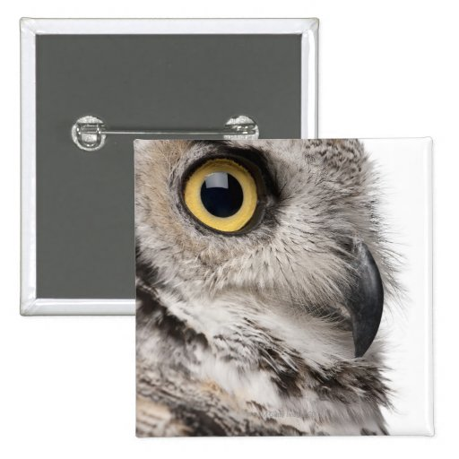 Great Horned Owl - Bubo Virginianus Subarcticus Pinback Button