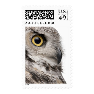 Great Horned Owl - Bubo Virginianus Subarcticus Postage Stamps