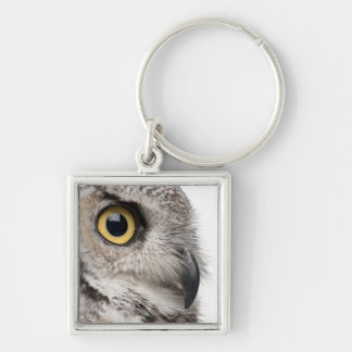 Great Horned Owl - Bubo Virginianus Subarcticus Silver-Colored Square Keychain