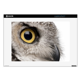 Great Horned Owl - Bubo Virginianus Subarcticus Skin For Laptop