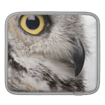 Great Horned Owl - Bubo Virginianus Subarcticus Sleeve For iPads