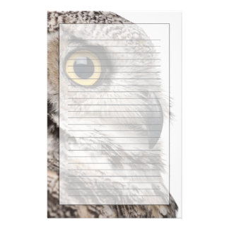 Great Horned Owl - Bubo Virginianus Subarcticus Stationery