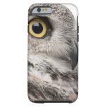 Great Horned Owl - Bubo Virginianus Subarcticus Tough iPhone 6 Case