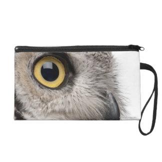 Great Horned Owl - Bubo Virginianus Subarcticus Wristlets