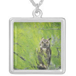 Great Horned Owl, Bubo virginianus , young in Silver Plated Necklace
