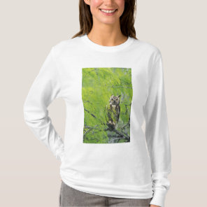 Great Horned Owl, Bubo virginianus , young in T-Shirt