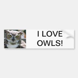 Great Horned Owl Car Bumper Sticker