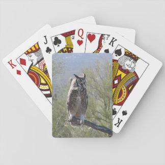 Great Horned Owl Card Decks