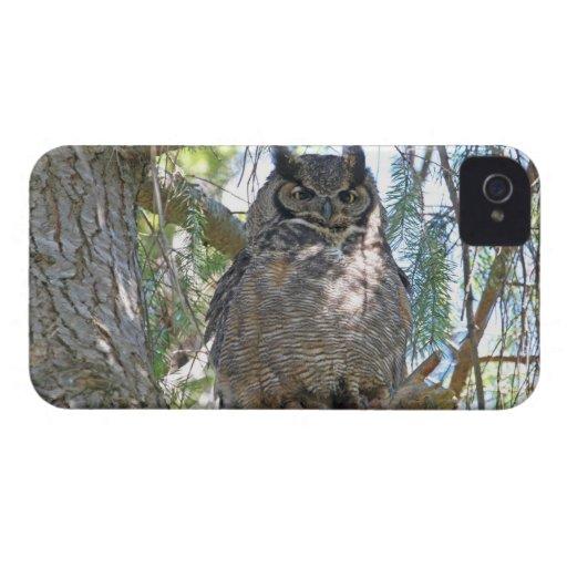 Great Horned Owl Case-Mate Blackberry Case