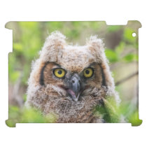 Great Horned Owl Case For The iPad